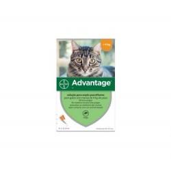 Advantage gato 40 menor que 4kg (4un)