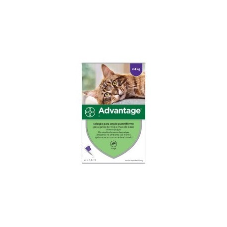 Advantage gato 80 maior que 4kg (4un)