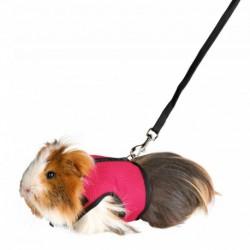Peitoral com trela elastica para Porco India e Furoes 18-25cm (cores sortidas)