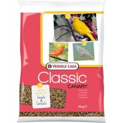 Canary 5Kg