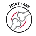 Joints and Mobility